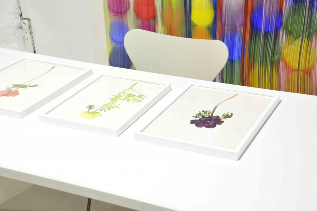Akvareller av Line Bergseth, i bakgrunden hänger en målning av Stefan Johansson.
